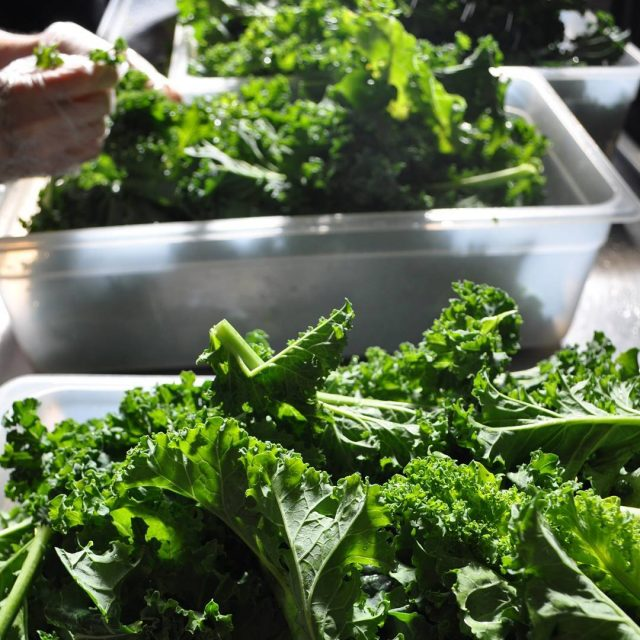 We just received a boatload of Kale from a localhellip