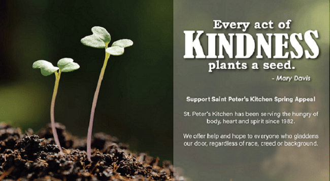 St Peters Kitchen Spring Appeal Graphic